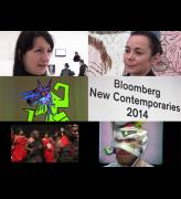 Bloomberg New Contemporaries, Institute of Contemporary Arts, London, 26 November 2014 – 25 January 2015.