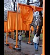 'The Gates, Volunteers Unhooking the Saffron fabric' Photo by Miguel Angel