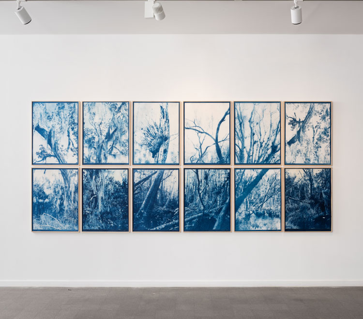 Kristina Chan and Itamar Freed. Dream in Blue. Installation view, Photo: Youval Hai.