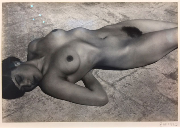Edward Weston. Nude (Tina on the Azotea), 1923. Gelatin silver contact print, 6 5/8 x 9 3/8 in. Edwynn Houk Gallery. Photograph: Jill Spalding.