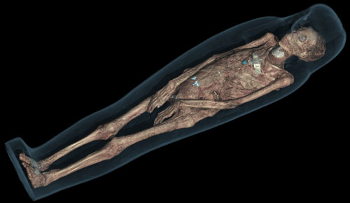 CT scan 3D visualisation of the mummified remains of Tayesmutengebtiu, also called Tamut, showing her body within the cartonnage. © Trustees of the British Museum.