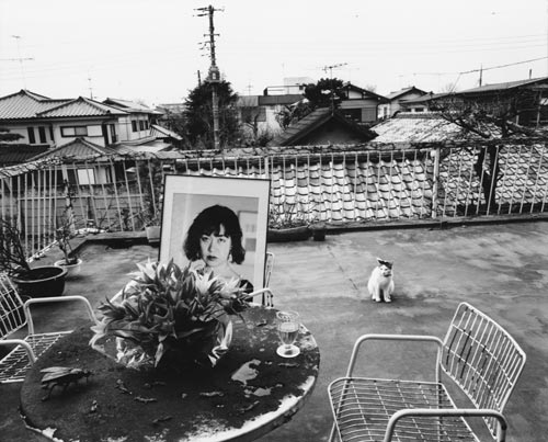 Nobuyoshi Araki. From <em>In Ruins, </em>early 1997 &copy; Courtesy the artist