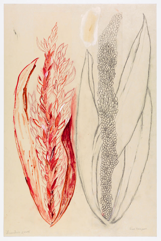 Louise Bourgeois. Eccentric Growth I, 2006. Soft ground etchings, with hand additions. Sheet: 58 1/2 × 38 1/8 in (148.6 × 96.8 cm). Collection Louise Bourgeois Trust and Osiris, New York. © 2017 The Easton Foundation/Licensed by VAGA, NY.