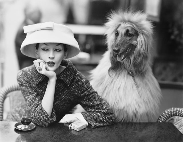 Dovima with Sacha, cloche and suit by Balenciaga, Café des Deux Magots, Paris, 1955. Photograph by Richard Avedon © The Richard Avedon Foundation.