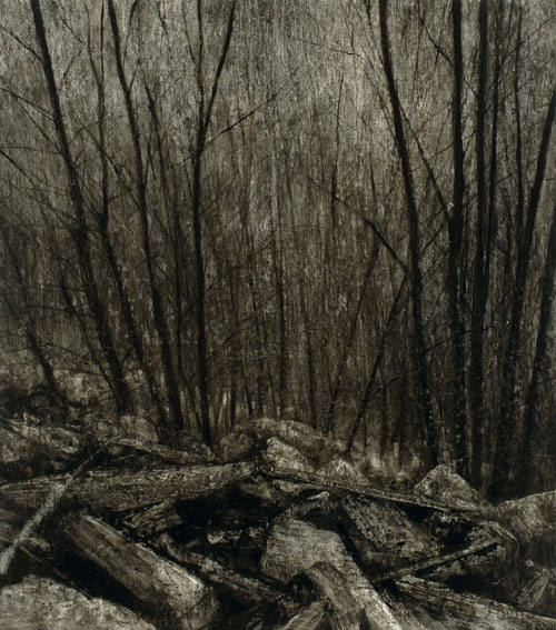 Nicholas Blowers. <em>Boulders descending through trees,</em> 2007. Oil on paper, 104 x 92 cm