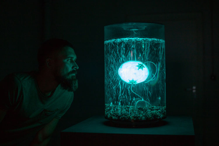 ArchaeaBot, 2018-19, by Anna Dumitriu and Alex May in collaboration with scientist Amanda Wilson. Photo: Vanessa Graf Ars Electronica 2018. © the artist.