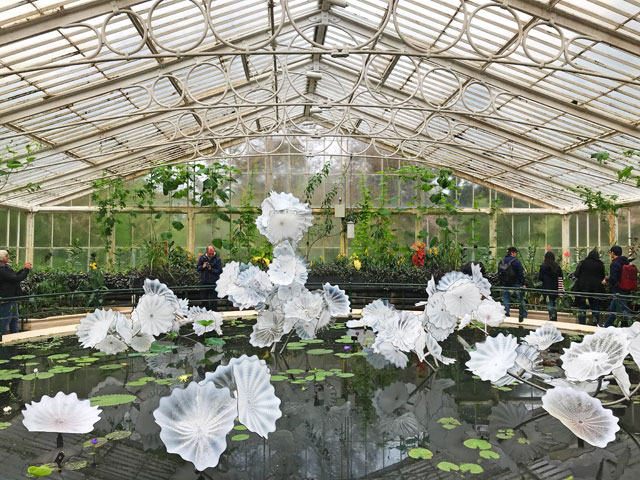 Dale Chihuly. Ethereal White Persian Pond, blown glass, 2018, installation in the Waterlily House. Royal Botanic Gardens, Kew, London 2019. Photo: Anna McNay.