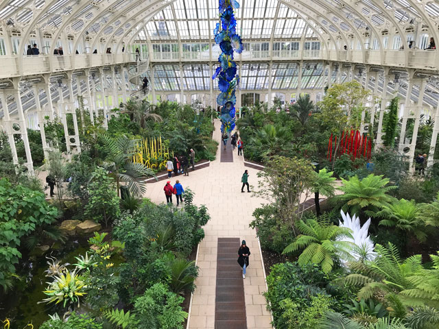 Dale Chihuly. Installations in the Temperate House, Royal Botanic Gardens, Kew, London 2019. Photo: Anna McNay.