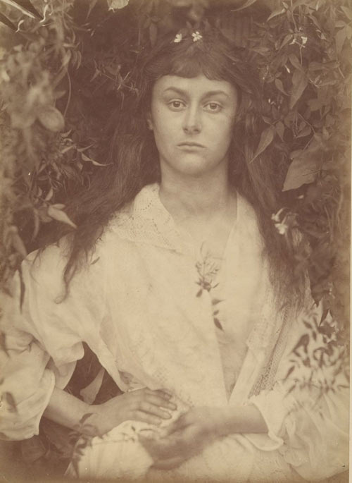 Julia Margaret Cameron. Pomona, September 1872. Albumen silver print from glass negative. David Hunter McAlpin Fund, 1963. The Metropolitan Museum of Art.