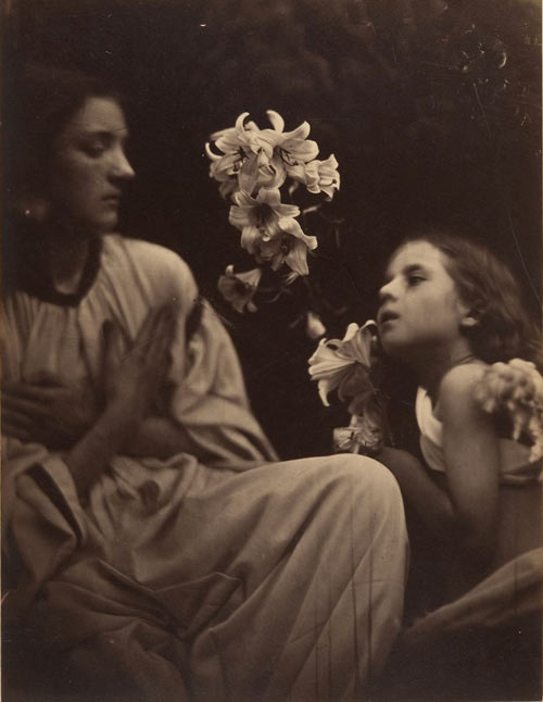 Julia Margaret Cameron. A Study, 1865–66. Albumen silver print from glass negative. Bequest of James David Nelson, in memory of Samuel J. Wagstaff Jr., 1990 The Metropolitan Museum of Art.