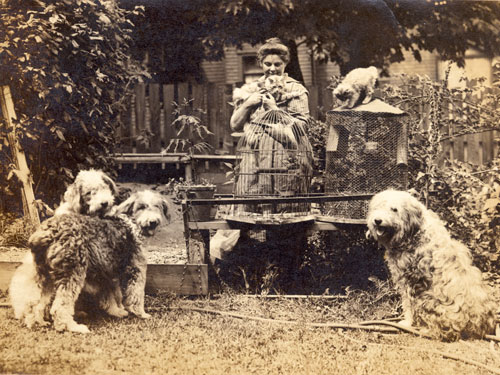Emily Carr and pets in her garden at 646 Simcoe Street, Victoria, British Columbia, c1918. Courtesy of the Royal BC Museum, BC Archives.
