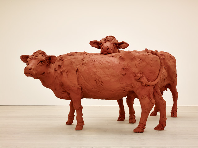 Stephanie Quayle. Two Cows, 2013. Air-hardening clay, chicken wire, steel, 230 x 340 x 170 cm. Photograph © Stephen White, 2015. Courtesy of the Saatchi Gallery, London.