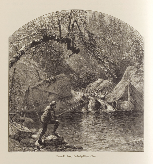 Harry Fenn (American, 1845-1911), <em>Emerald Pool, Peabody Glen, White Mountains</em>, published in <em>Picturesque America</em>, or <em>The Land We Live In</em>, Vol. I, p. 166. U.S.A., 1872-1874. Wood engraving with letterpress on white wove paper. Courtesy of Smithsonian Institution Libraries, Washington, D.C. Photo: Matt Flynn