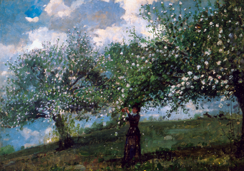Winslow Homer (American, 1836-1910),<em> Girl Picking Apple Blossoms</em>. U.S.A., 1879. Brush and oil paint on canvas. Gift of Mrs. Charles Savage Homer, Jr., 1918-20-7. Photo: John Parnell
