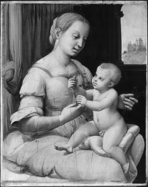 Raphael. <em>The Madonna of the Pinks</em>, <br>         about 1506-7 (image 2). © National Gallery, London.