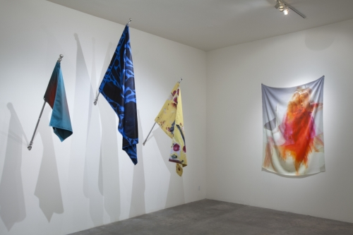 Petra Cortright. Installation view of XXX BLANK BLANK BLANK at Steve Turner Contemporary, Los Angeles, 2013. Medium variable, dimensions variable.