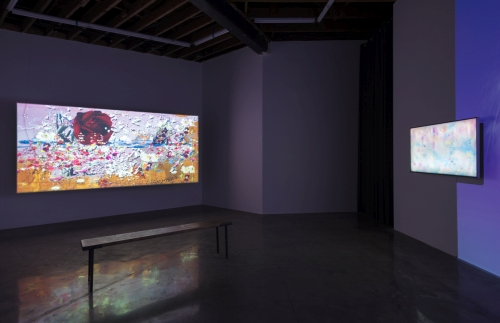 Petra Cortright. Installation view (4) of NIKI LUCY LOLA VIOLA at DEPART Foundation, Los Angeles, 2015. Medium variable, dimensions variable.