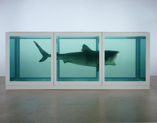 Damien Hirst. <em>The Physical Impossibility of Death in the Mind of Someone Living,</em> 1991. Glass, painted steel, silicone, monofilament, shark and formaldehyde solution. © Damien Hirst and Science Ltd. All rights reserved. DACS 2012. Photograph: Prudence Cuming Associates.
