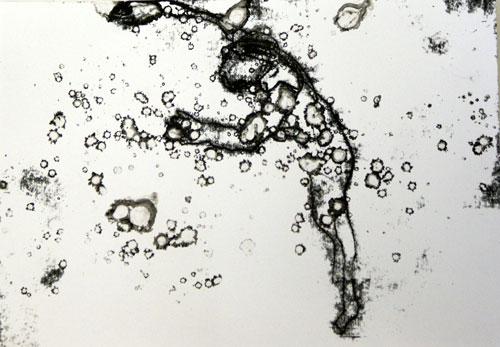Tom de Freston. <em>Floater</em>, 2009. Monoprint on paper, 30 x 23 cm.