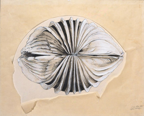 Jay DeFeo. After Image, 1970. Graphite, gouache, and transparent synthetic polymer on paper with cut-and-torn tracing paper, 14 1/2 x 19 1/2 in. (36.8 x 49.5 cm). The Menil Collection, Houston; gift of Glenn Fukushima. © 2012 The Jay DeFeo Trust/Artists Rights Society (ARS), New York. Photograph: Paul Hester.