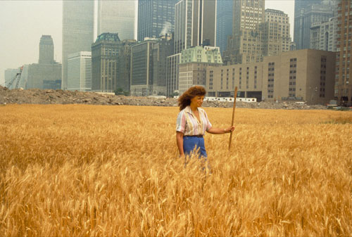 Agnes Denes, Wheatfield – A Confrontation: Battery Park Landfill, Downtown Manhattan – With Agnes Denes Standing in the Field, 1982. © Agnes Denes, courtesy Leslie Tonkonow Artworks + Projects, New York.