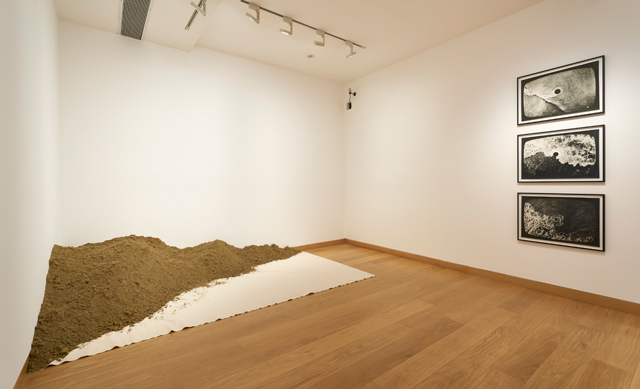Installation view, Barry Flanagan, Animal, Vegetable, Mineral, 4 March - 14 May 2016, Image courtesy of Waddington Custot Galleries, London.