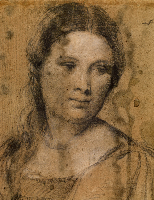 Titian. <em>Study of a young woman</em>, around 1510. Black and white chalk on faded blue paper. Copyright the Gabinetto Disegni e Stampe degli Uffizi.