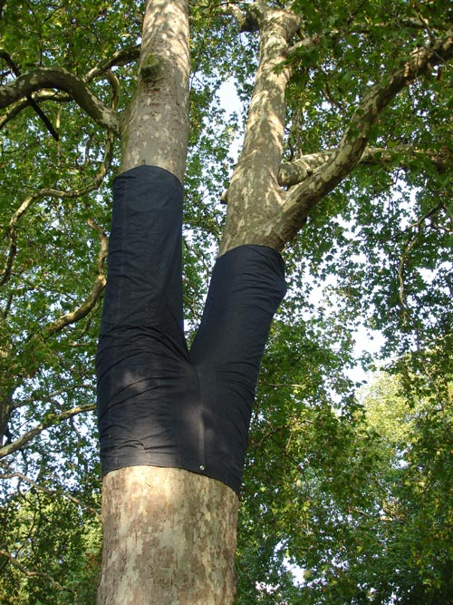 Peter Coffin. <em>Untitled (Tree Pants),</em> 2006. Copyright Linda Nylind, courtesy Frieze Art Fair.