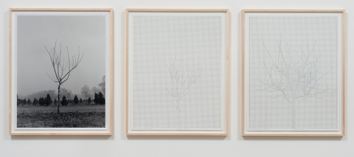 Charles Gaines. Walnut Tree Orchard, Set 2, 1975-2012. Mechanical pen on paper, photo. Triptych, 29 x 23 in each. Image courtesy of the Artist and Susanne Vielmetter Los Angeles Projects.