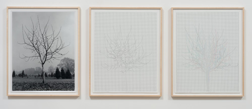 Charles Gaines. Walnut Tree Orchard, Set 4, 1975-2012. Mechanical pen on paper, photo. Triptych, 29 x 23 in each. Image courtesy of the Artist and Susanne Vielmetter Los Angeles Projects.