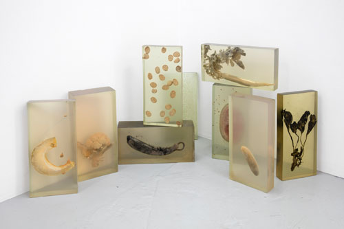 Vibha Galhotra. Consumed Contamination, 2012. Installation view.