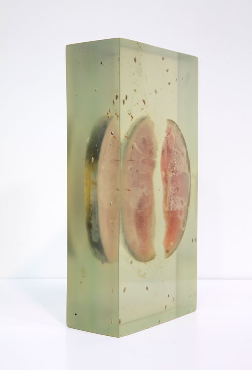 Vibha Galhotra. Consumed Contamination, 2012. Organic matter embedded in resin, 15 3/8 x 7 7/8 x 4 7/8 in.