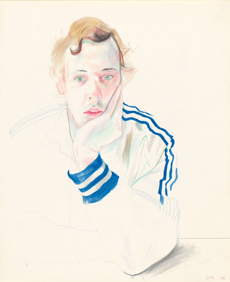 David Hockney. Gregory, 1978. Coloured pencil on paper, 17 x 14 in. © David Hockney. Photo: Richard Schmidt, Collection The David Hockney Foundation.