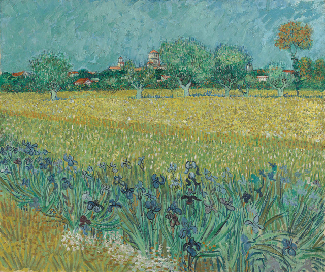 Vincent Van Gogh. Field with Irises near Arles, 1888. Oil on canvas, 54 x 65 cm. Van Gogh Museum, Amsterdam (Vincent van Gogh Foundation).