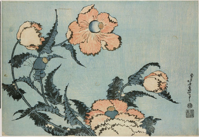 Poppies from Large Flowers. Colour woodblock, 1831-1832. © The Trustees of the British Museum.