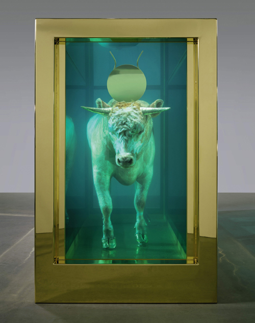 Damien Hirst. <em>The Golden Calf</em> (end), 2008. Calf, 18 carat gold, glass, gold-plated steel, silicone and formaldehyde solution with Carrara marble plinth, 84.8 x 126 x 54 in. / 215.4 x 320 x 137.2 cm. © Damien Hirst