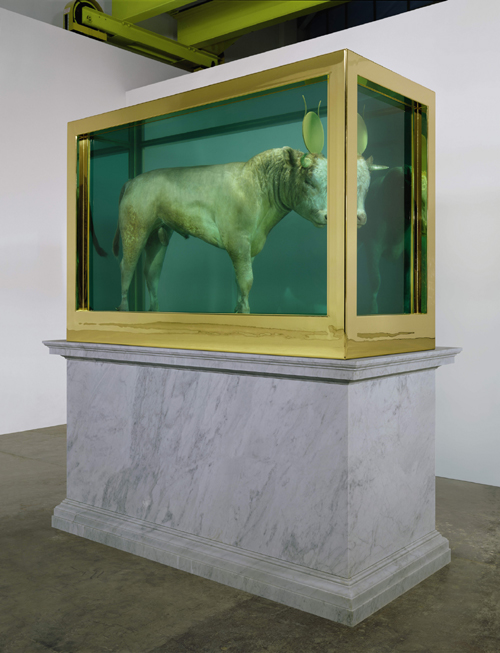 Damien Hirst. <em>The Golden Calf</em> (on plinth angle), 2008. Calf, 18 carat gold, glass, gold-plated steel, silicone and formaldehyde solution with Carrara marble plinth, 84.8 x 126 x 54 in. / 215.4 x 320 x 137.2 cm. &copy; Damien Hirst