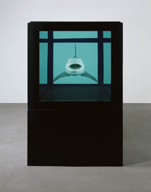 Damien Hirst.<em> The Kingdom</em> (front), 2008.  Tiger shark, glass, steel, silicone and formaldehyde solution with steel plinth, 51.4 x 151 x 55.8 in. / 130.6 x 383.6 x 141.8 cm. &copy; Damien Hirst