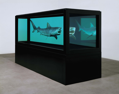 Damien Hirst.<em> The Kingdom</em>, 2008.  Tiger shark, glass, steel, silicone and formaldehyde solution with steel plinth, 51.4 x 151 x 55.8 in. / 130.6 x 383.6 x 141.8 cm. &copy; Damien Hirst