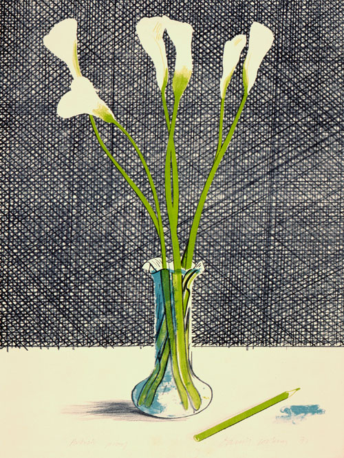 David Hockney. Lillies, 1971. Lithograph, 29 1/2 x 21 in, Edition: 65 & ed: 35. © David Hockney.