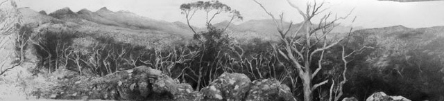Philip Hunter. Cassidy's Track – Southern Grampians (detail), 2015. Pencil. Copyright the artist. 
