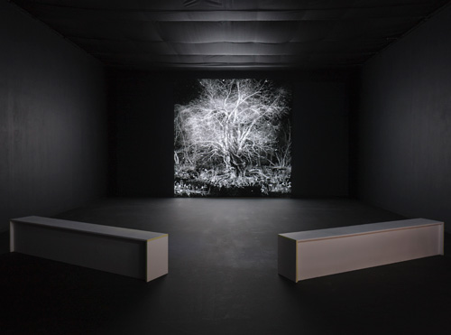 IC-98. Abendland (Hours, Years, Aeons), 2015. Installation view. Photograph: Ruth Clark.