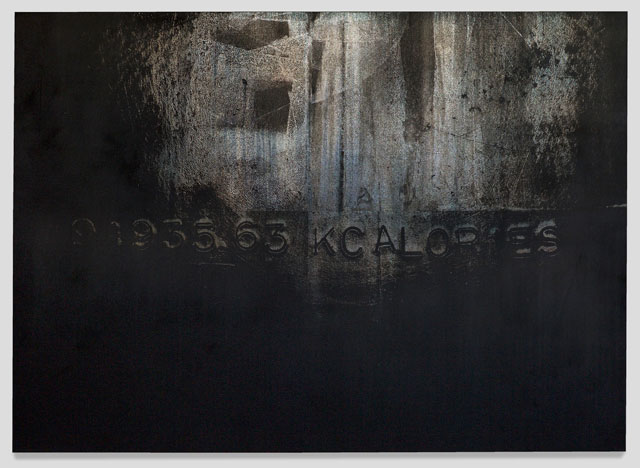 Michael Joo. Untitled (Take), 2016. Silver nitrate and epoxy ink on canvas, 233.7 x 182.9 cm (92 x 72 in). Courtesy the artist and Blain Southern. Photograph: Peter Mallet.