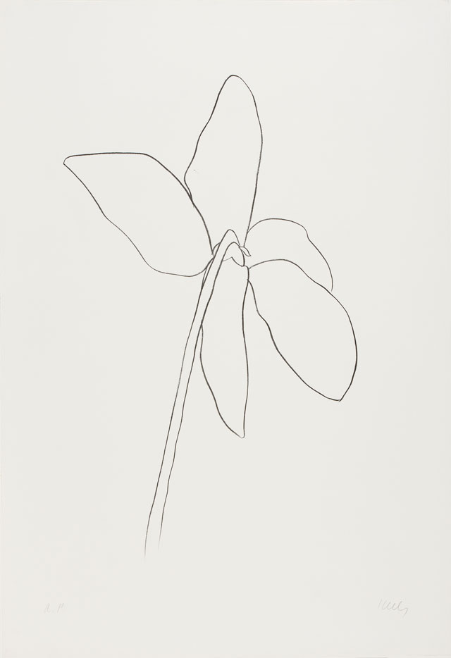 Ellsworth Kelly. Cyclamen IV, 1964–65. Transfer lithograph on Rives BFK paper, 35 1/4 x 24 1/8 in (89.5 x 61.3 cm). Norton Simon Museum, Gift of the Artist, 1969, P.1969.041. © Ellsworth Kelly Foundation and Maeght Éditeur.