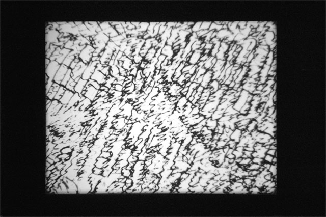 Joachim Koester. My Frontier is an Endless Wall of Points (after the mescaline drawings of Henri Michaux), 2007. 16mm film, black and white, silent 10 min 24 sec, film still. Courtesy the artist and Jan Mot, Brussels.