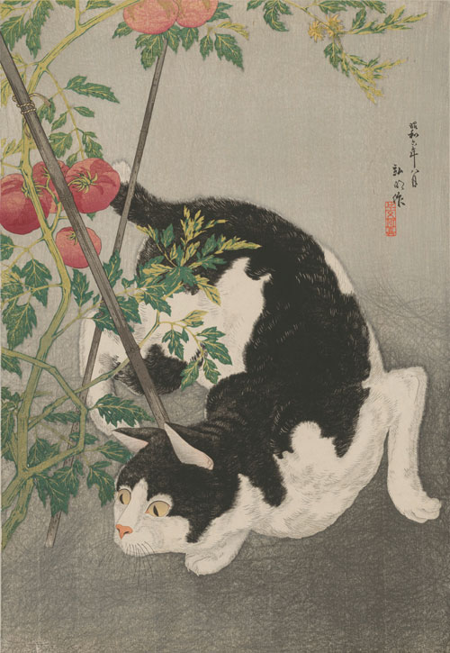 Takahashi Hiroaki (Shōtei) (1871–1945), Cat Prowling Around a Staked Tomato Plant, 1931. Colour woodblock print; 29 ½ x 23 ¼ in. Courtesy Private Collection, New York and Tokyo.