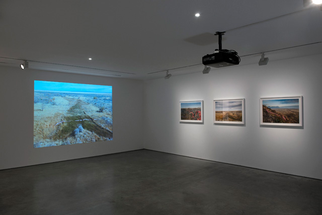 Installation view. K Yoland.