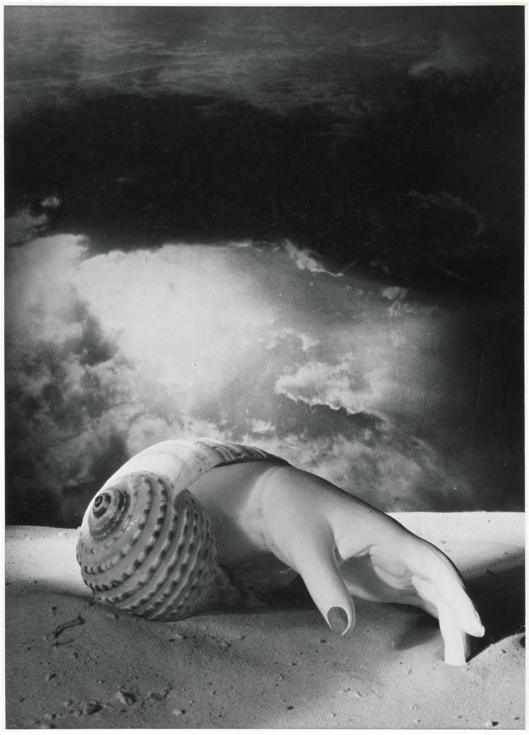 Dora Maar. Untitled (Hand-Shell), 1934. Photograph, gelatin silver print on paper, 40.1 x 28.9 cm. Centre Pompidou, Musée national d'art moderne, Paris. Photo © Centre Pompidou, MNAM-CCI, Dist. RMN-Grand Palais / image Centre Pompidou, MNAM-CCI. © ADAGP, Paris and DACS, London 2019.