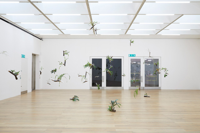 Daniel Steegmann Mangrané, The Word for World is Forest, 2019, installation view at Nottingham Contemporary. Photo Stuart Whipps.