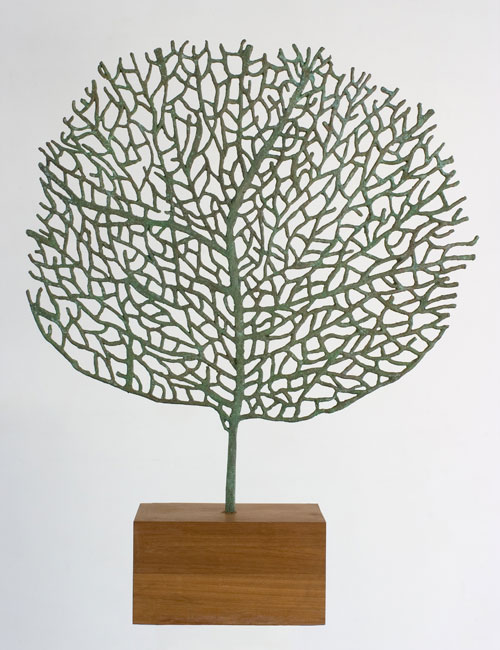 Abigail McLellan. Large Seafan Sculpture, 2005. Bronze and oak, approx 120 x 98 x 23 cm.